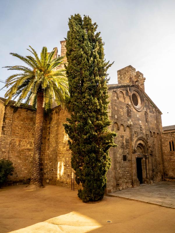 Palme kirche Sant Pau del Camp Barcelona
