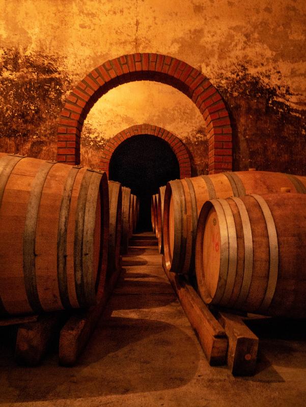 Castelo Rodrigo aldeias historicas wein