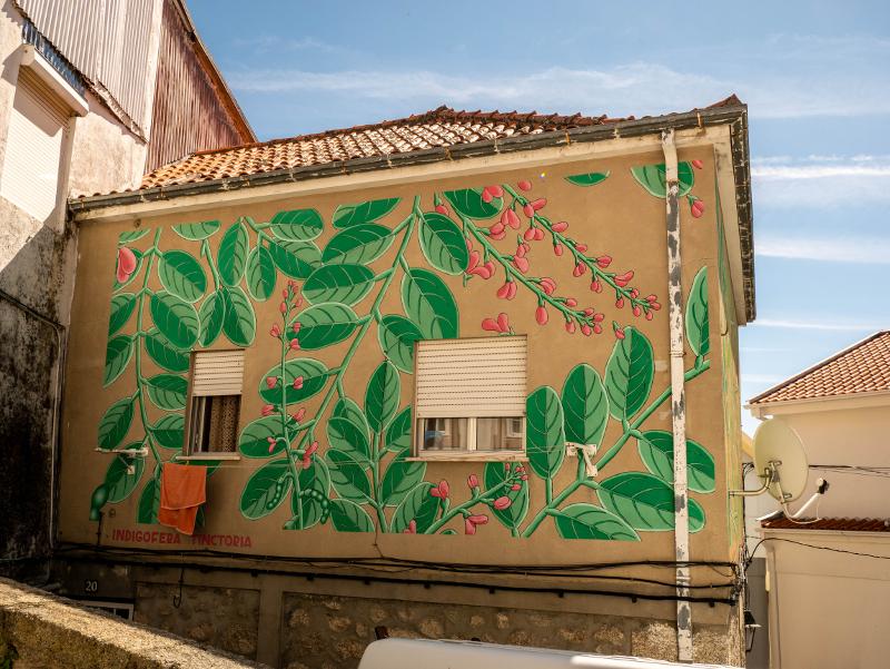 ODA OA Street Art Wool fest in Covilhã