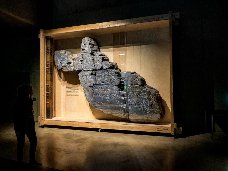 fariseu museum vale do côa felsmalerei
