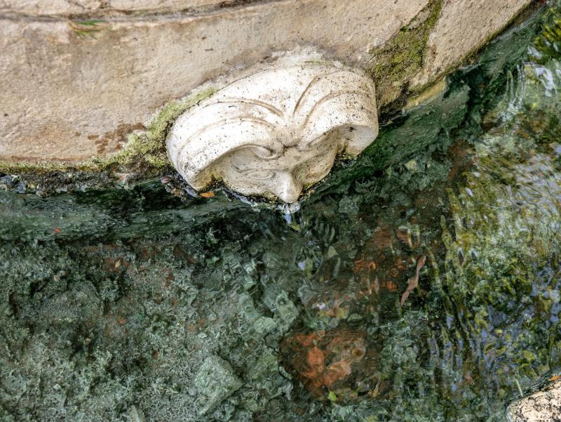 estany banyoles font pudosa