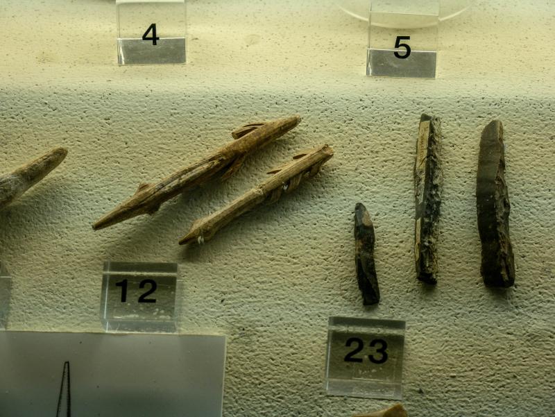 banyoles museum
