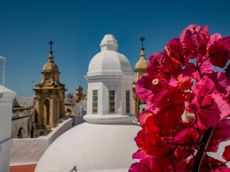 Dach Altstadt Cádiz