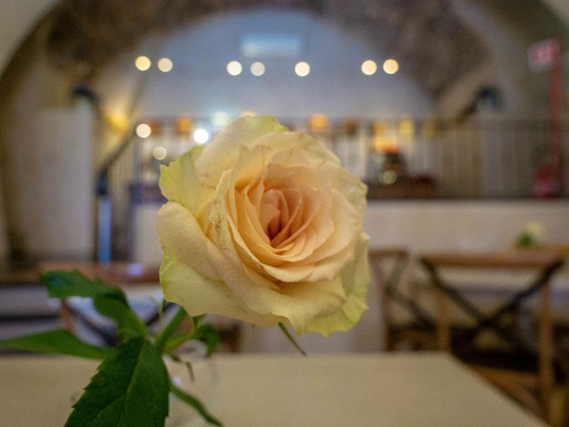 rose relais del maro borgomaro ligurien