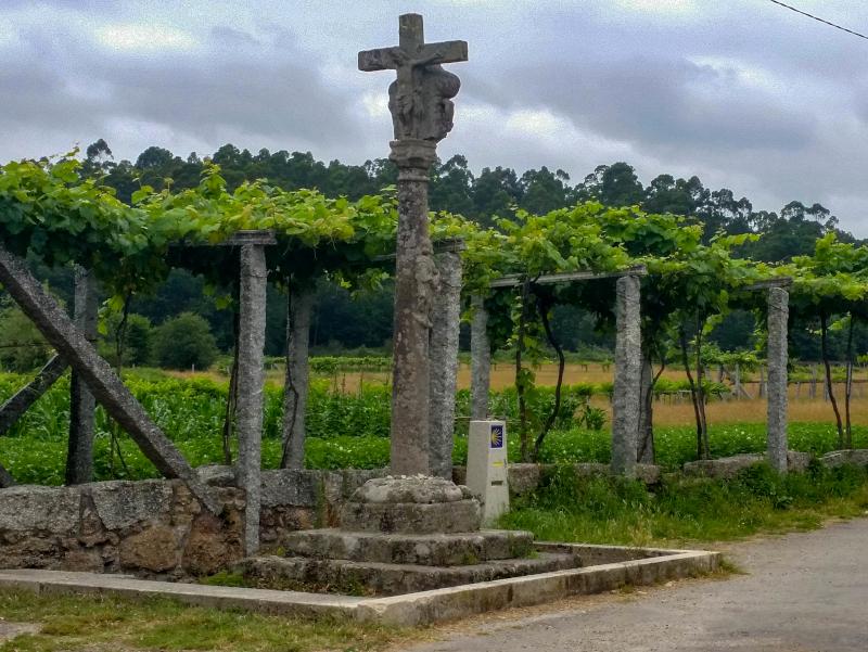 wein portugiesischer jakobsweg