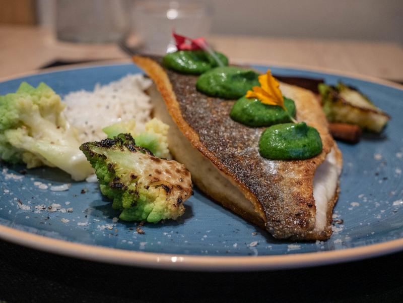 fisch girona gute restaurants tipps sanbo suppe restaurant