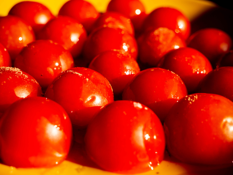 tomatensalat studio66