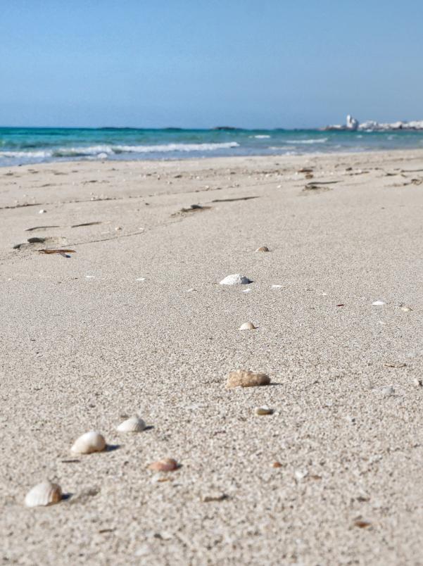 fontanelle strand