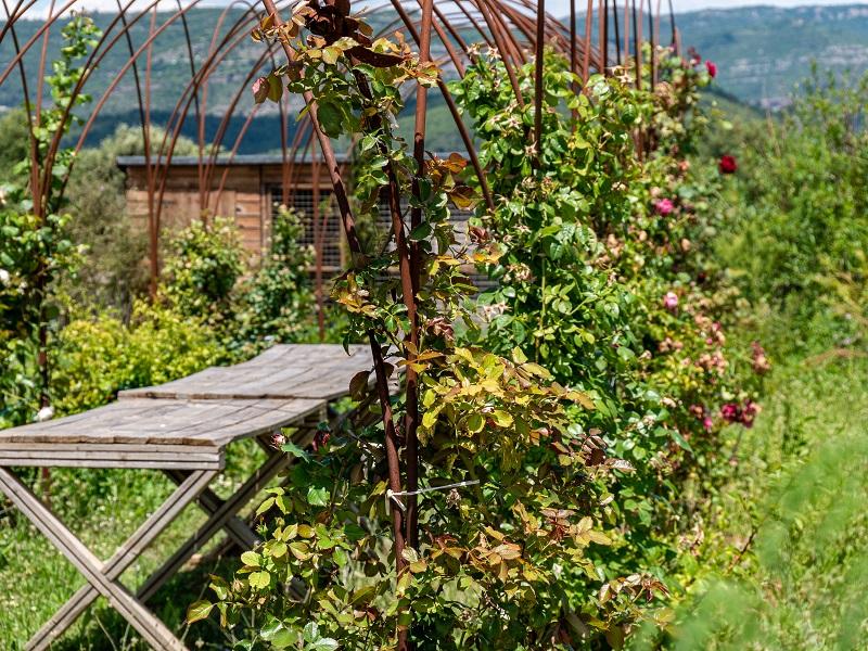 parc dels olors rosenstoecke garten der düfte