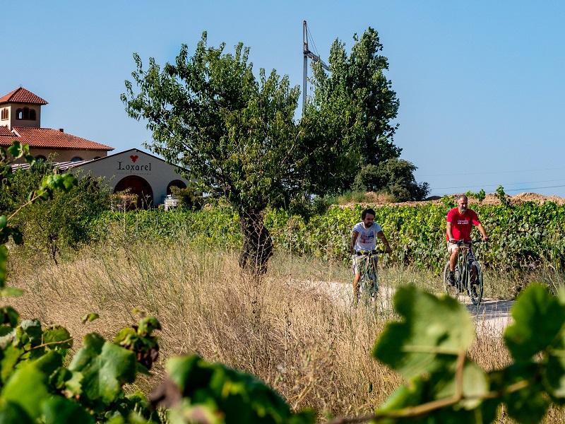 ecotours Penedes Radtour