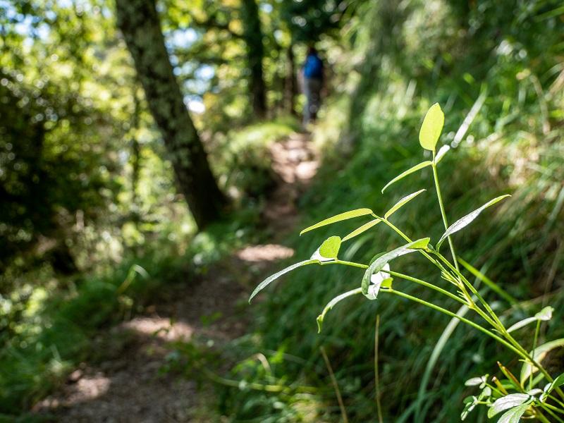 wandern Pyrenäen Rocabruna Burg