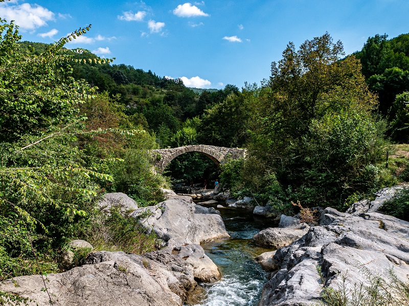 pont roma