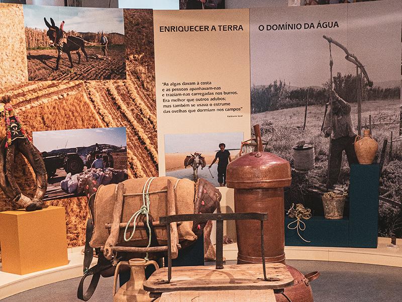 museu carrapateira