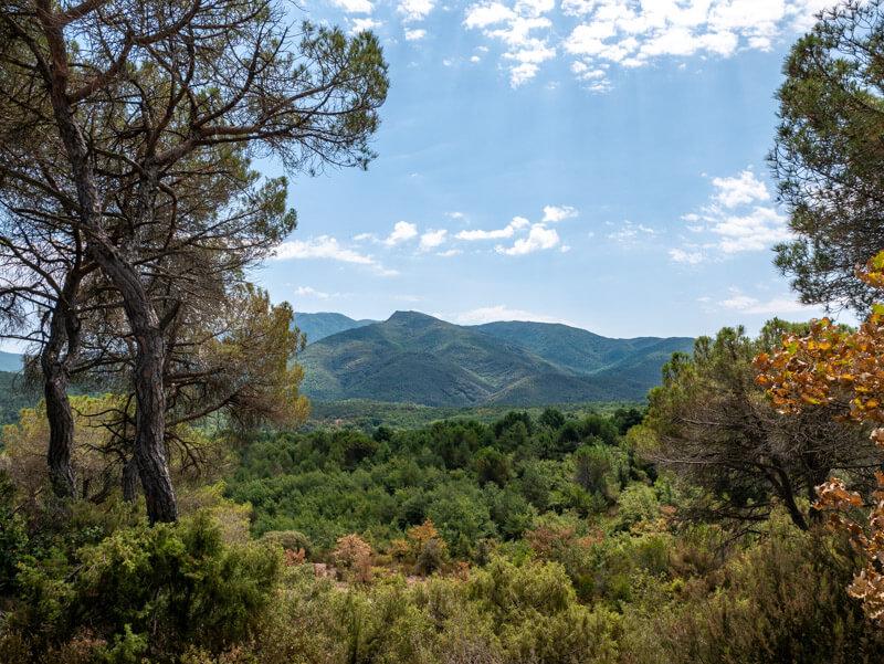 Blick auf den Montseny