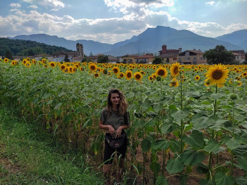 lina in sonnenblumenfeld olot