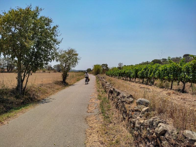 Wein Radtour Katalonien